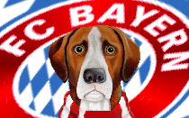 Bayern Munich News Hound