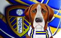 Leeds United News Hound