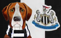 Newcastle United News Hound