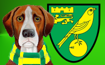 Norwich City News Hound