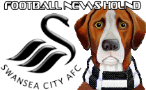 Swansea City News Hound