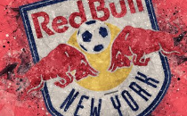 New York Red Bulls Name Kari Cohen General Counsel